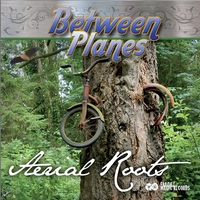 New Aerial Roots CD by Between Planes